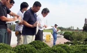 植木品評会で厳正な審査をする審査員